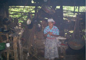 Informe Mujeres Indigenas CIDH